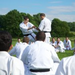 0196-france-kyokushin-stage-2013