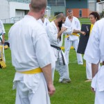 0329-france-kyokushin-stage-2013