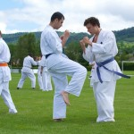 0373-france-kyokushin-stage-2013
