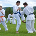 0374-france-kyokushin-stage-2013