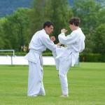 0380-france-kyokushin-stage-2013