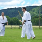 0400-france-kyokushin-stage-2013