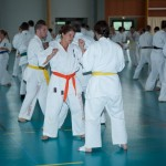 0497-france-kyokushin-stage-2013