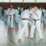 0505-france-kyokushin-stage-2013
