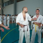 0521-france-kyokushin-stage-2013