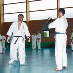 0554-france-kyokushin-stage-2013