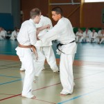 0573-france-kyokushin-stage-2013