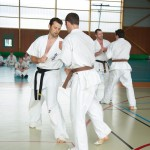 0576-france-kyokushin-stage-2013