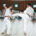0579-france-kyokushin-stage-2013