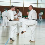 0582-france-kyokushin-stage-2013