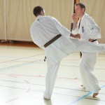 0590-france-kyokushin-stage-2013
