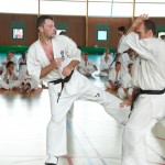 0595-france-kyokushin-stage-2013